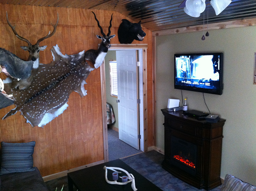 Cabin Lodging Accommodations And Outdoor Kitchen Area